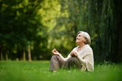 Happy old woman Stock Image