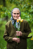Happy old woman with flowers Stock Images