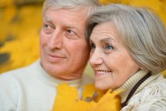 Happy older pair Royalty Free Stock Image