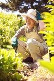 Happy older woman gardening. In backyard looking at camera smiling Royalty Free Stock Photo