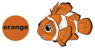 Fish is orange. Happy orange clownfish with sign and word on it orange Royalty Free Stock Images