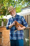 Farmer holds chicken in his arms in front of hen house royalty free stock images