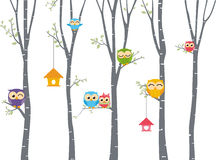 Happy Owl background with tree branch Royalty Free Stock Images