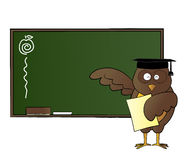 Happy owl teaching in class. Represent an owl holding a paper, and teaching in front of a classroom Stock Images