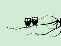 Happy Owls in love on tree. Two happy young owls on branch in love royalty free illustration