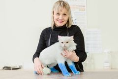 Happy owner with cat. Happy owner with her cat after treatment in vet clinic royalty free stock photo