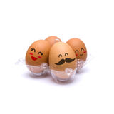 Happy pack of four brown eggs Royalty Free Stock Images