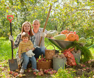 Happy parents and child with  harvested vegetables. In garden Stock Photography