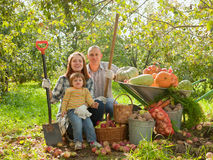 Happy parents and child with   vegetables. Happy parents and child with  harvested vegetables in garden Stock Image