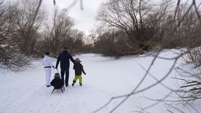 Happy parents go the distance in pulling sledging youngest son. Meanwhile, the elder son of catches. Joyful family stock video footage