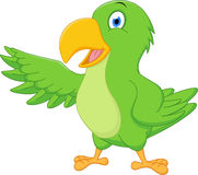 Happy parrot cartoon presenting Royalty Free Stock Photos