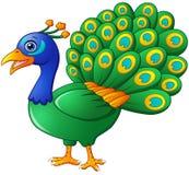 Happy peacock cartoon isolated on white background Royalty Free Stock Photo