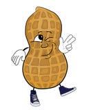 Happy peanut cartoon character Stock Photography
