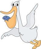 Happy Pelican Stock Image