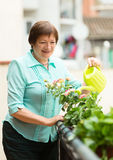 Happy pensioner with watering-can taking care of plants Royalty Free Stock Photo