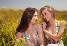 Happy people concept  smiling girlfriends having fun on the fiel Stock Image