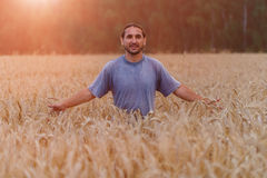 Happy people in a field of wheat touched by the hands and ears o Stock Image