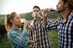 People tasting wine in vineyard. Happy people tasting wine in vineyard Stock Images