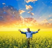 Happy people among a yellow field Stock Image