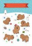 Happy Pets Chow-chow. Year of dog stock images