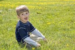 Happy picnic. Stock Photo