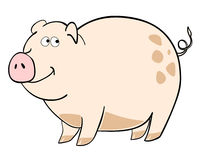 Happy pig. Vector illustration of a cute pig Royalty Free Stock Images