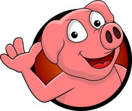 Happy pig cartoon isolated Royalty Free Stock Image