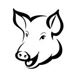 Happy pig head portrait Stock Images