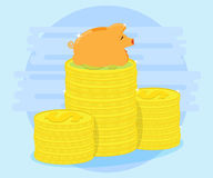 Happy pig piggy bank lying on a pile of coins. Successful investments and cash flows make profit and wealth Stock Photos