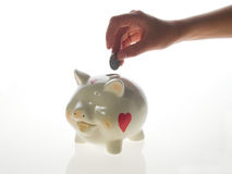Happy piggy bank Stock Photo
