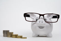 Happy piggy bank with coins Stock Photography