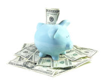 Happy Piggy Profile. U.S. one hundred dollar bill stuck partially into a blue ceramic piggy bank sitting in a pile of money. Isolated on white. Shallow depth of royalty free stock images