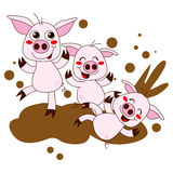 Happy Pigs. Three funny pig cartoon characters having fun playing on dirty mud Royalty Free Stock Images
