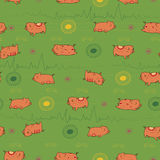 Happy pink piggies with green background stock image