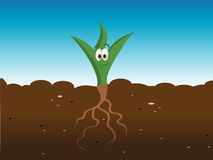 Happy plant. Cartoon illustration of a happy plant Stock Image