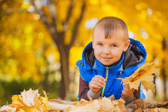 Happy playful boy have fun in the yellow leaves Royalty Free Stock Photo
