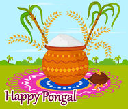 Happy Pongal celebration Royalty Free Stock Images