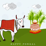 Happy Pongal festival celebration concept. Stock Photos