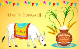 Happy Pongal Stock Photos