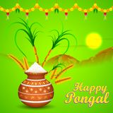 Happy Pongal Royalty Free Stock Images