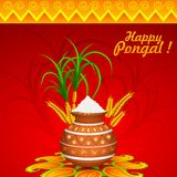 Happy Pongal Royalty Free Stock Photography