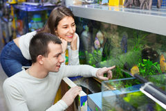 Happy positive customers selecting tropical fish in aquarium tan Royalty Free Stock Photography