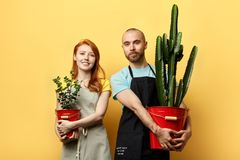 Happy positive florists team holding flowers in buckets stock images