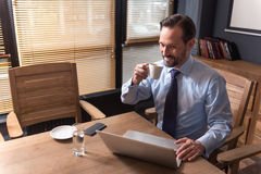 Happy positive office worker having coffee. Morning coffee. Nice cheerful hard working man holding a cup and drinking coffee while working on the laptop Royalty Free Stock Images