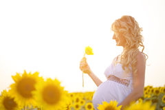 Happy pregnancy. A happy pregnancy woman outdoors stock images