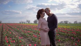 Happy pregnancy, lovely female with man future parents caressing tummy and enjoy harmony on floret tulip field against. Clear sky stock footage
