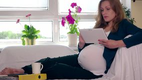 Happy pregnant business woman drink tea and use tablet computer relaxing on sofa stock footage