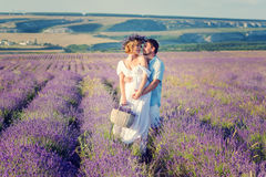 Happy pregnant couple in a lavender Stock Photos