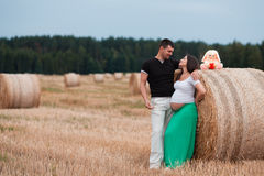 Happy pregnant couple on oat field Royalty Free Stock Images