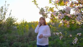 Happy pregnant girl talking on phone at sunset in blooming spring park. pregnant girl with phone lit by the rays of sun. Happy pregnant girl talking on phone at stock video
